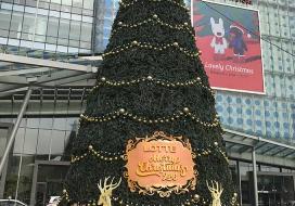 BienQuangCao01243
